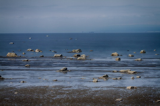 Cook Inlet